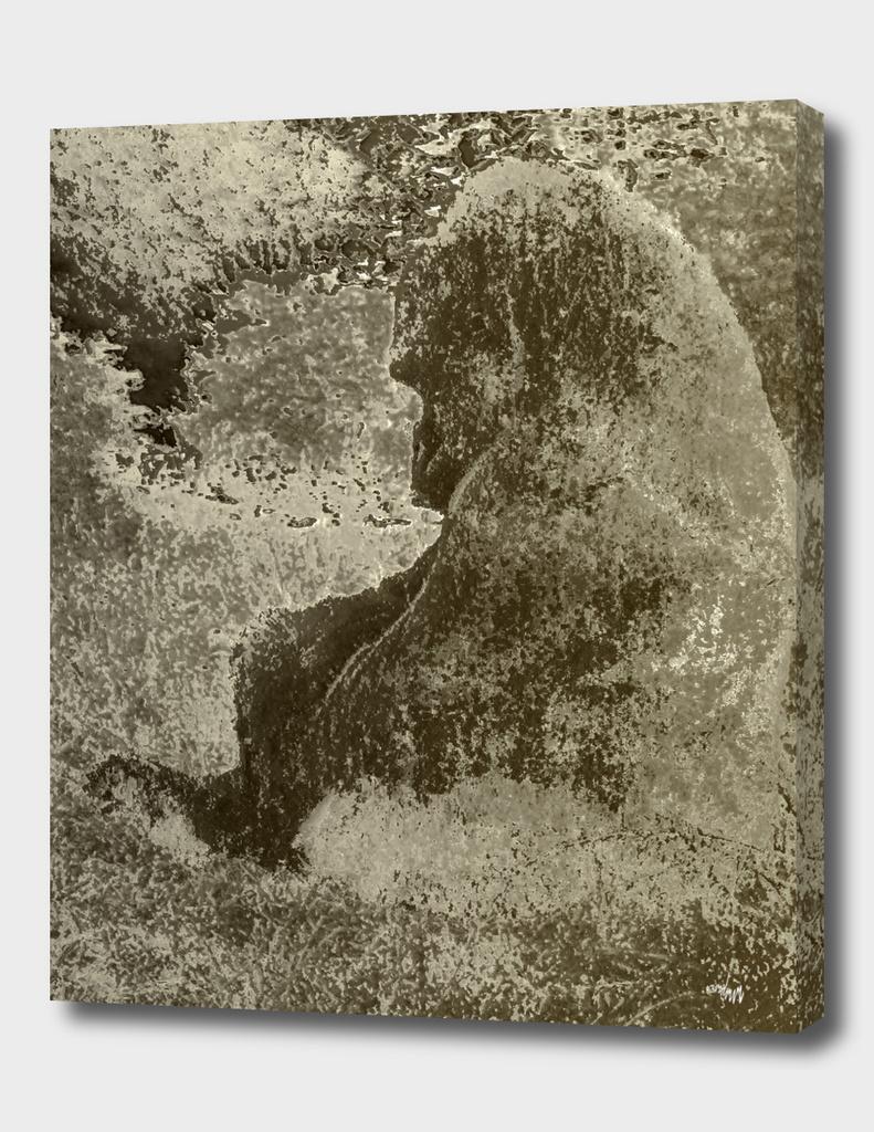 sadgorilla