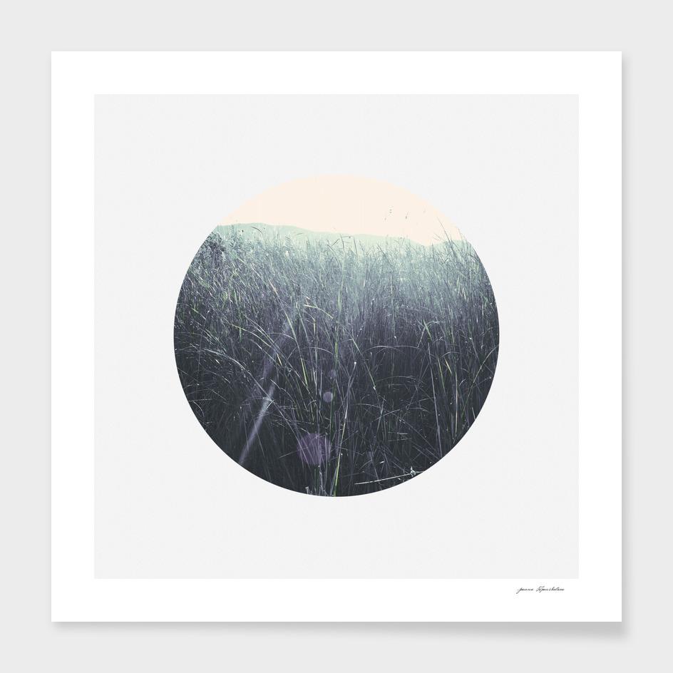 Circular landscape sunlight