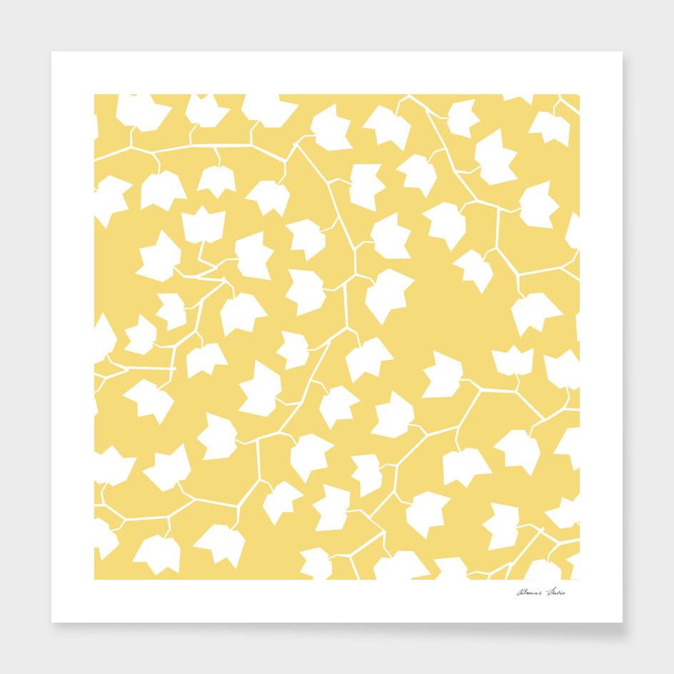 White ivy on yellow