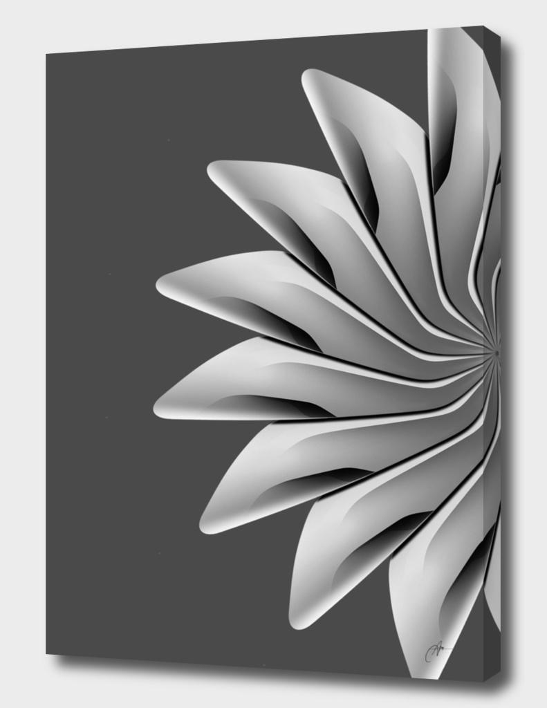 radial geometry_4