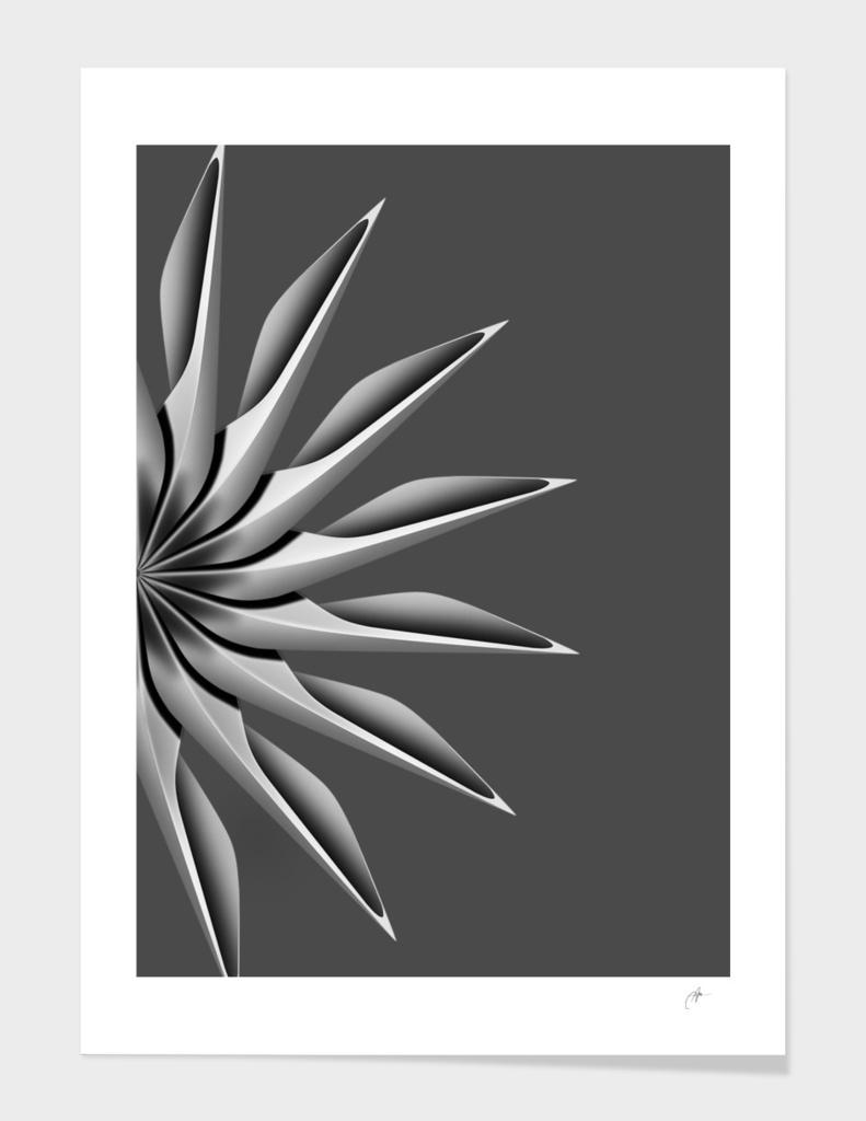 radial geometry_5