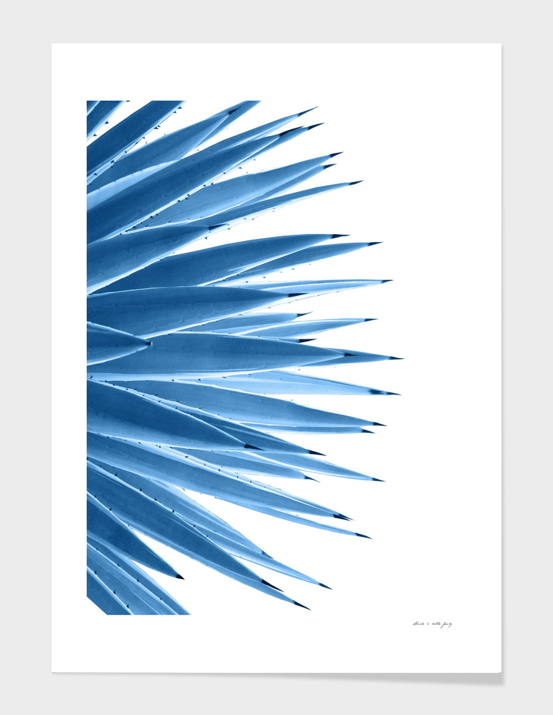 Classic Blue Agave Dream #1 #tropical #decor #art