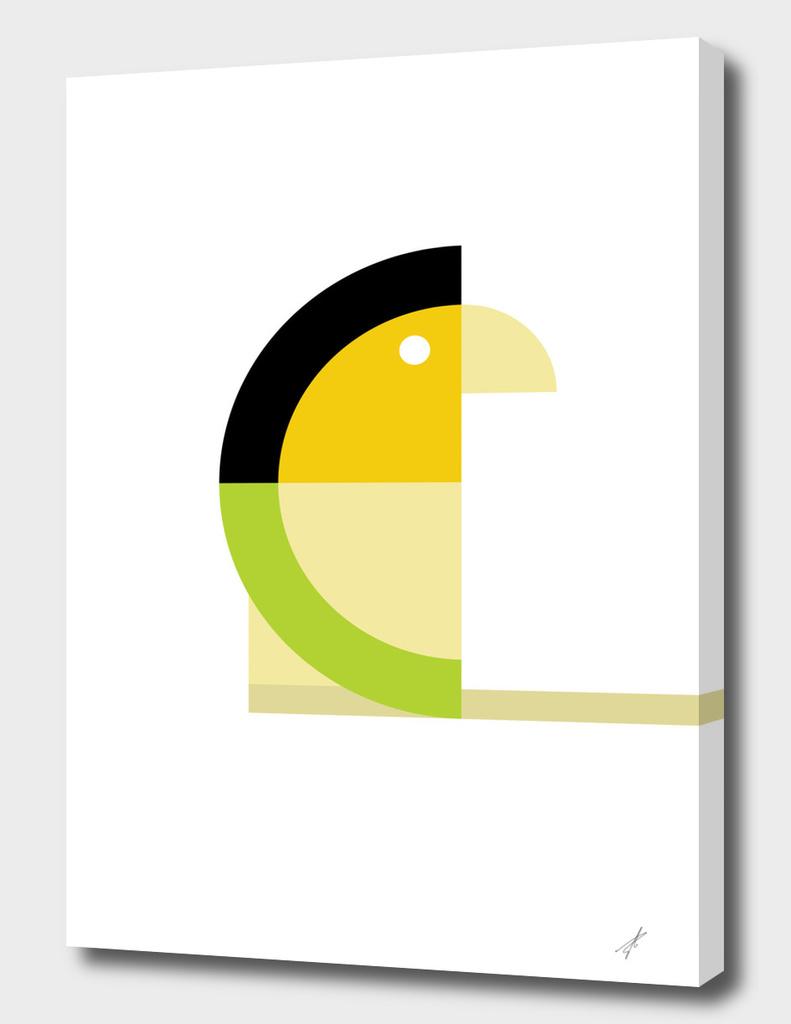 Quadrant Parakeet