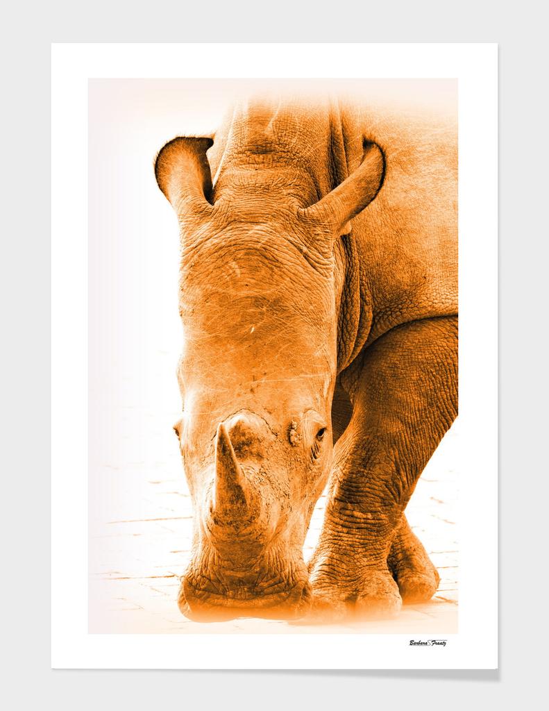Rhino 6085 gold