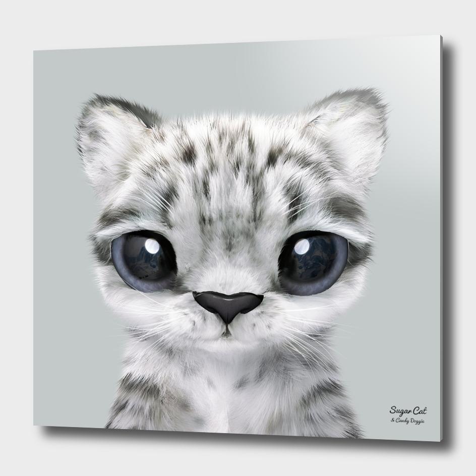 Yungki the Snow Leopard