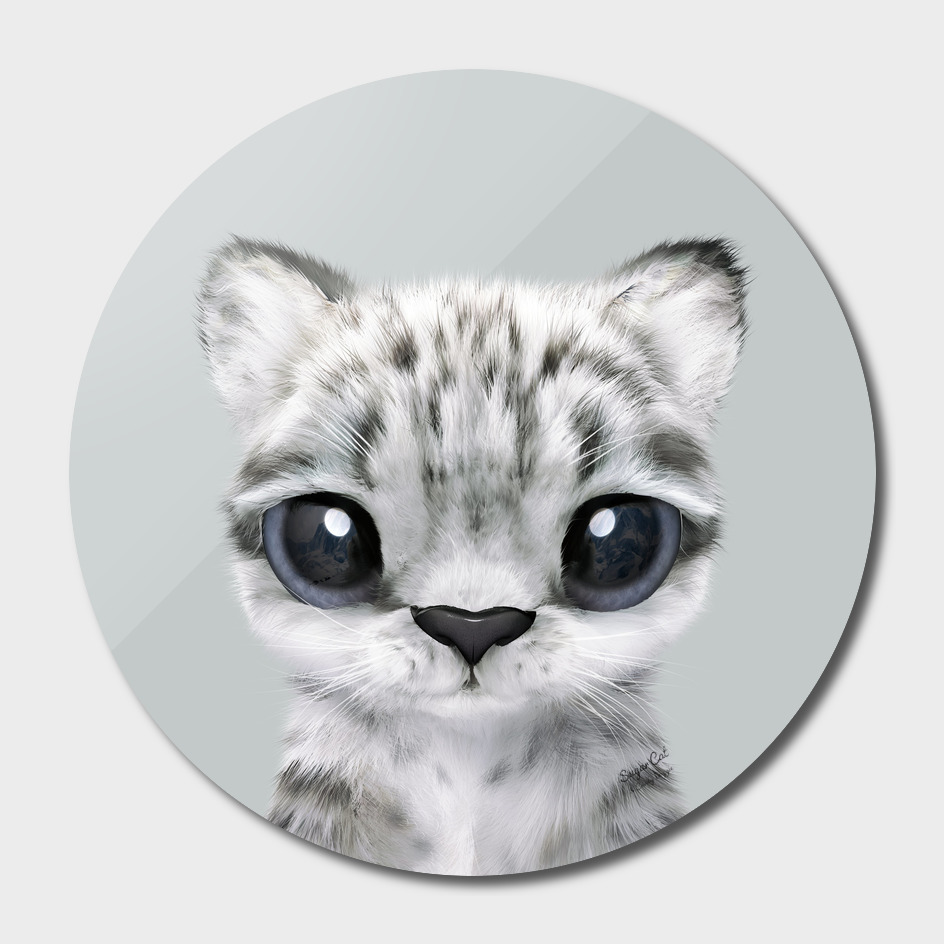 Yungki the Snow Leopard