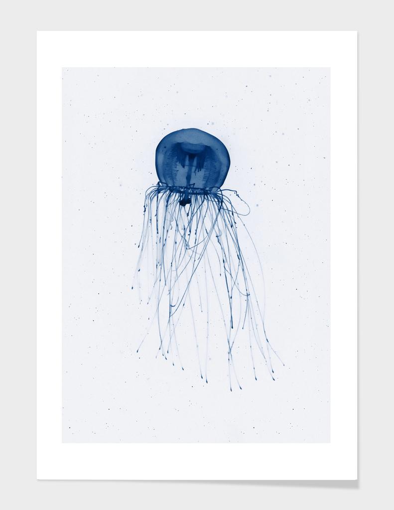 Immortal jellyfish