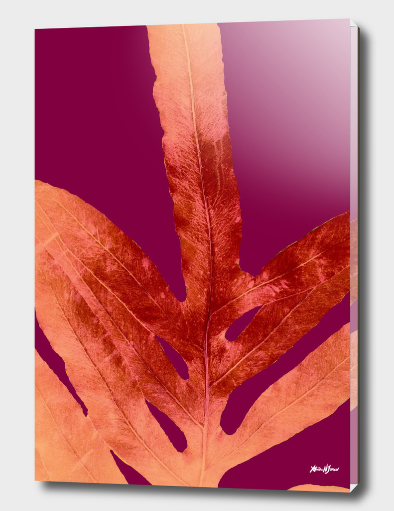 Fall Fern Leaf