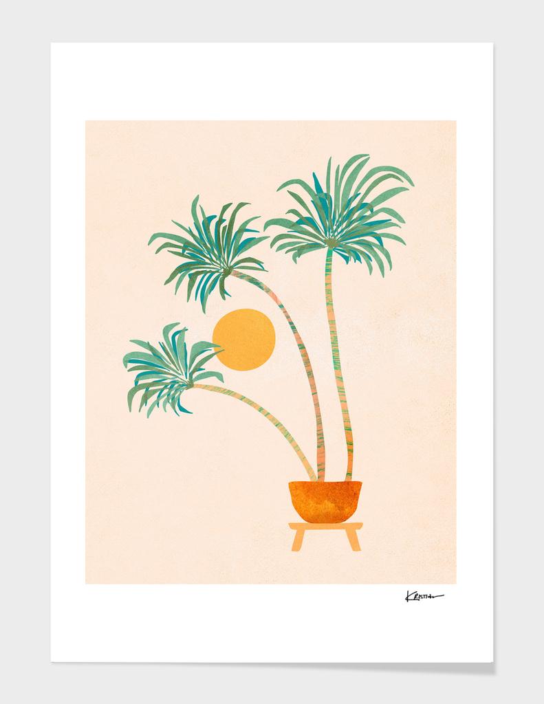 SoCal Palms