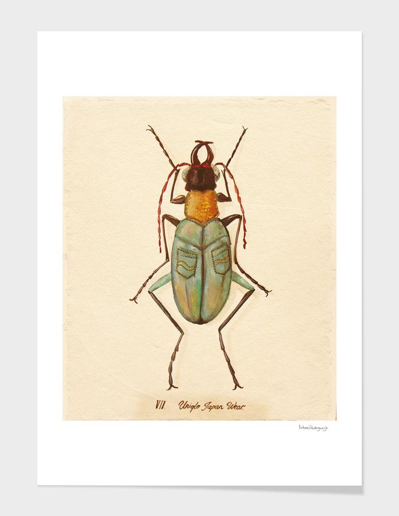 Bug #9