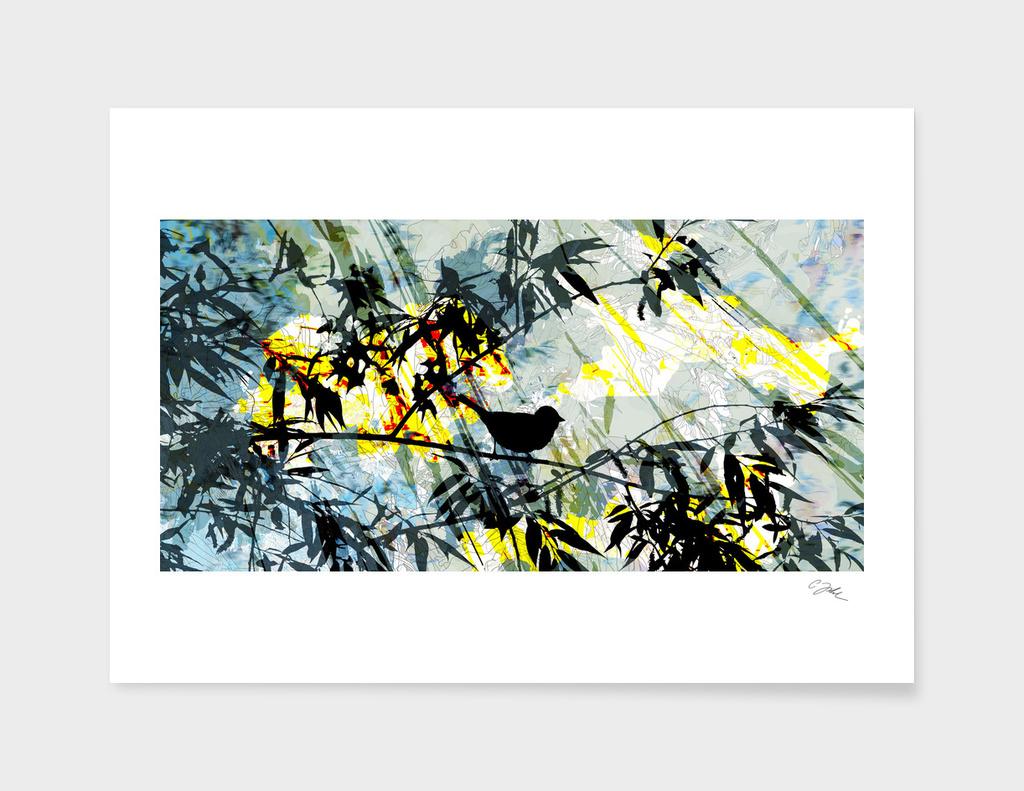 backlight birdsong  II