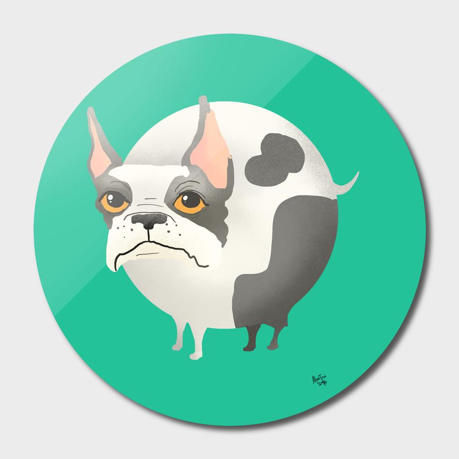 Ball Dog