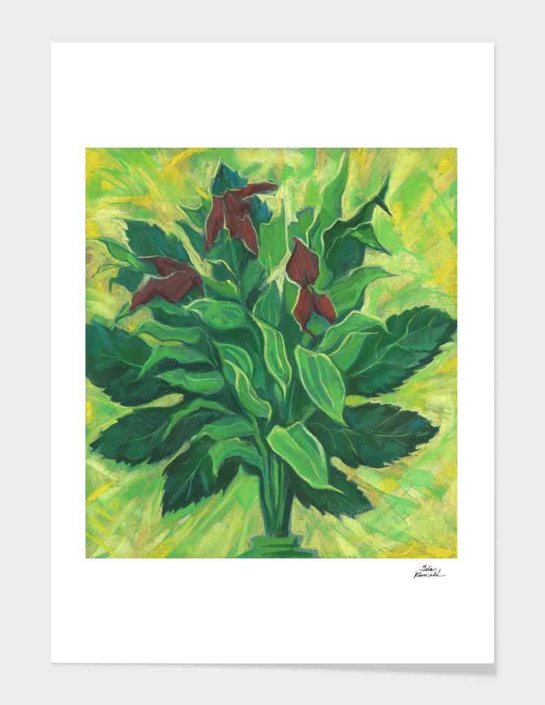 Leaf, Leaves and Orchids, Floral Art, Pastel Painting