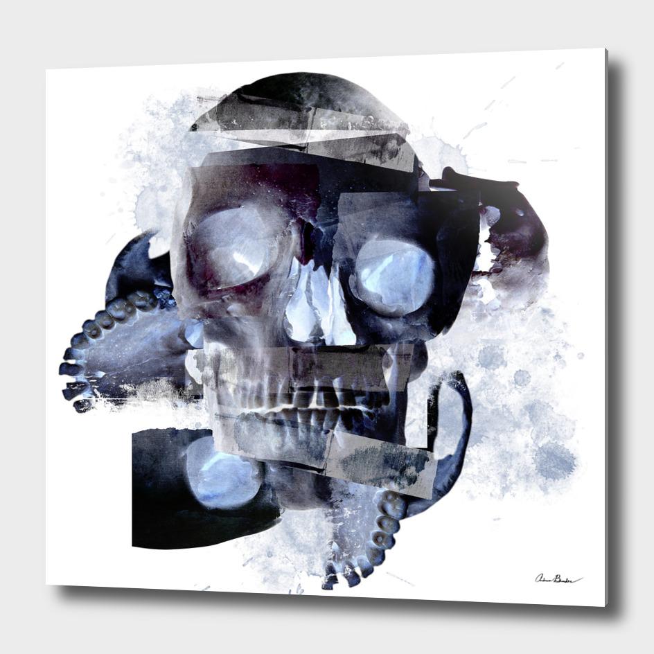 Skull Abstract
