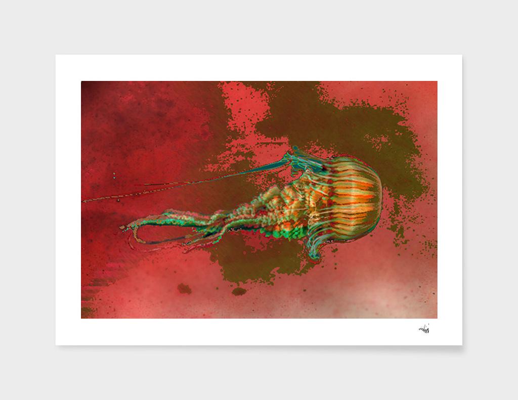 blended jellyfish