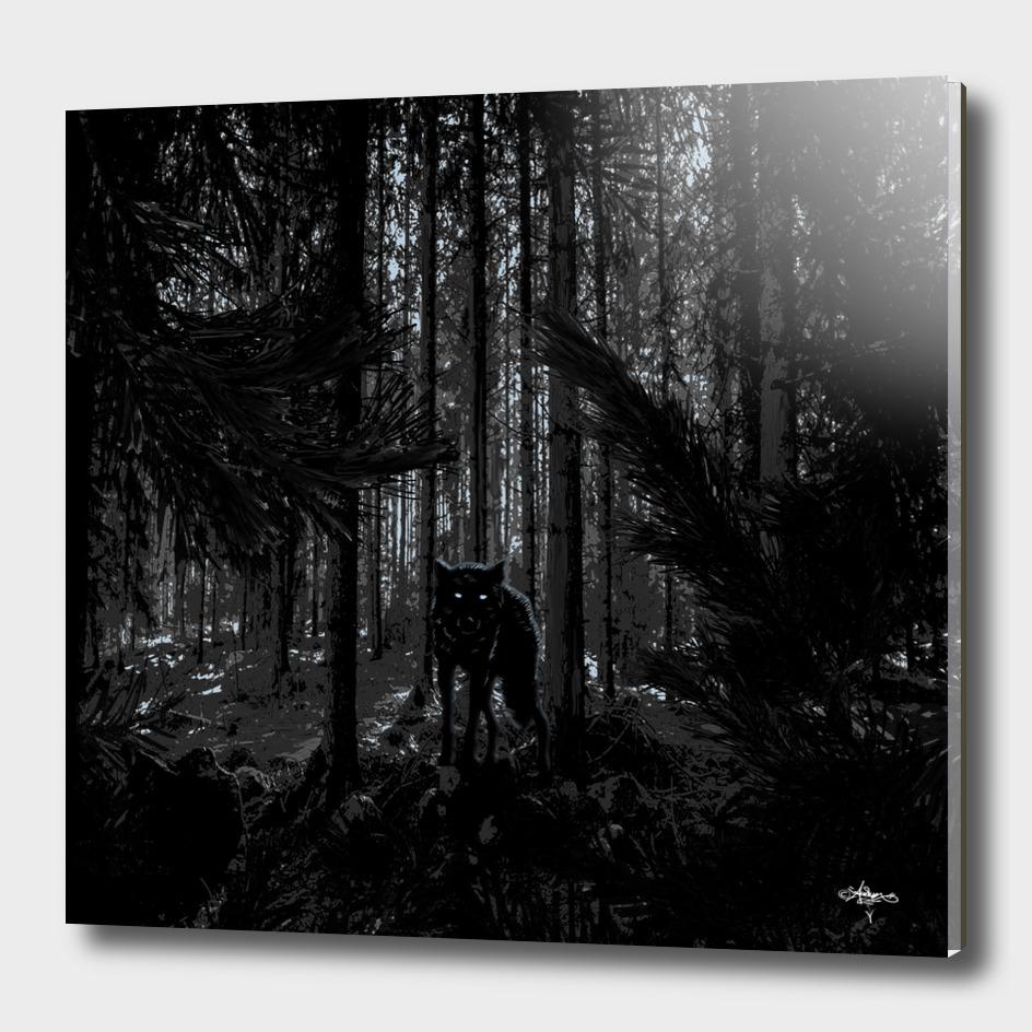 Forrest Wolf