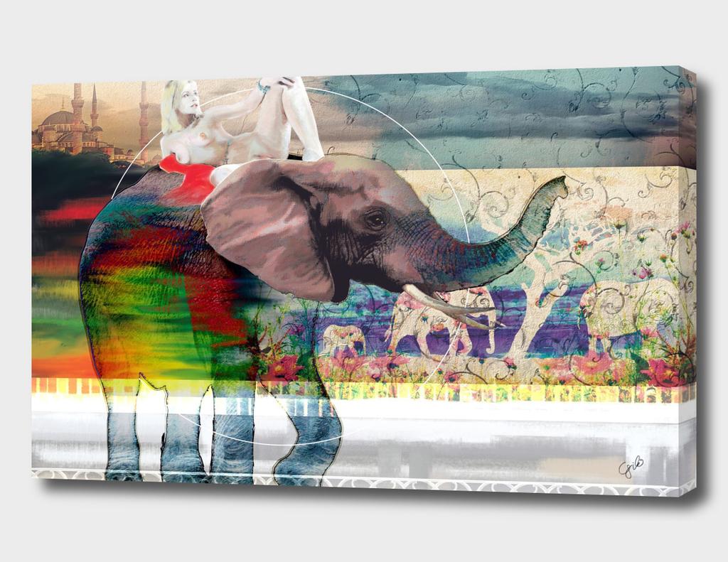 Elephant Muse