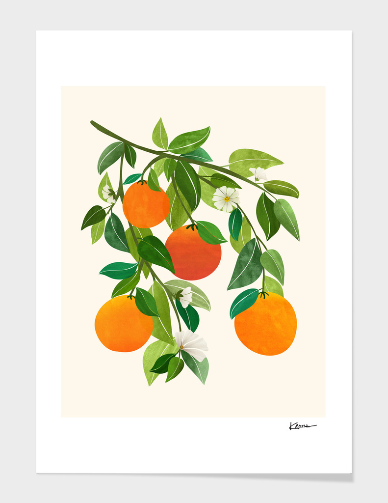 Oranges and Blossoms II