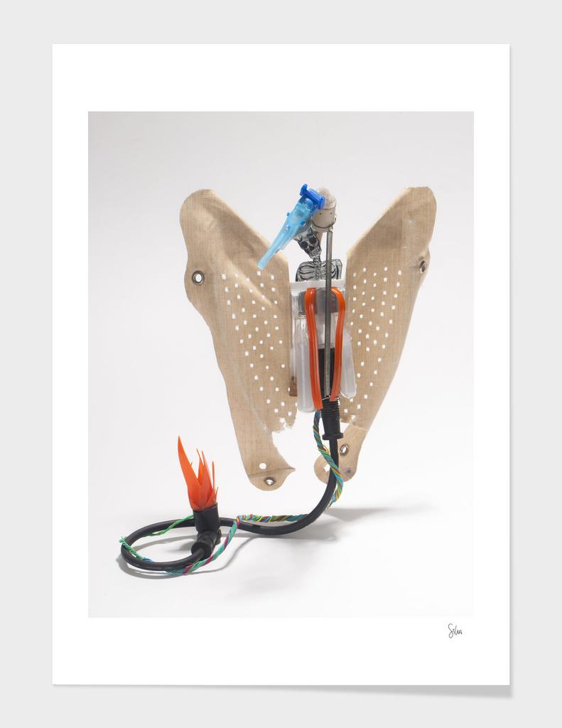 Instantibus phoenix