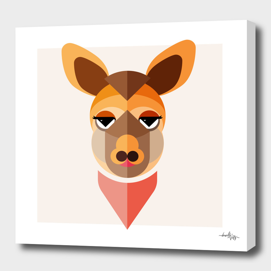 Kangaroo Illustration