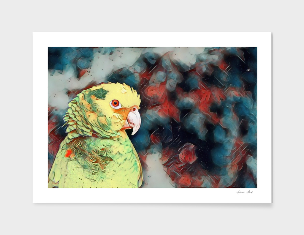 YELLOW HEADED PARROT ON CANVAS