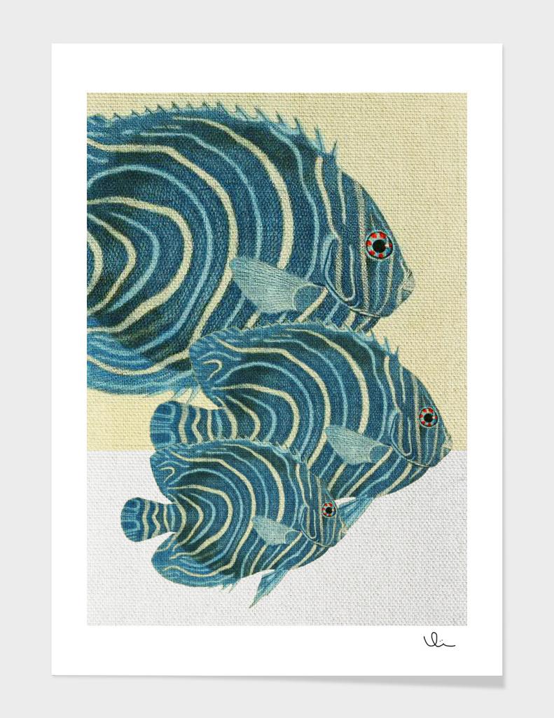 Fish Classic Designs 9
