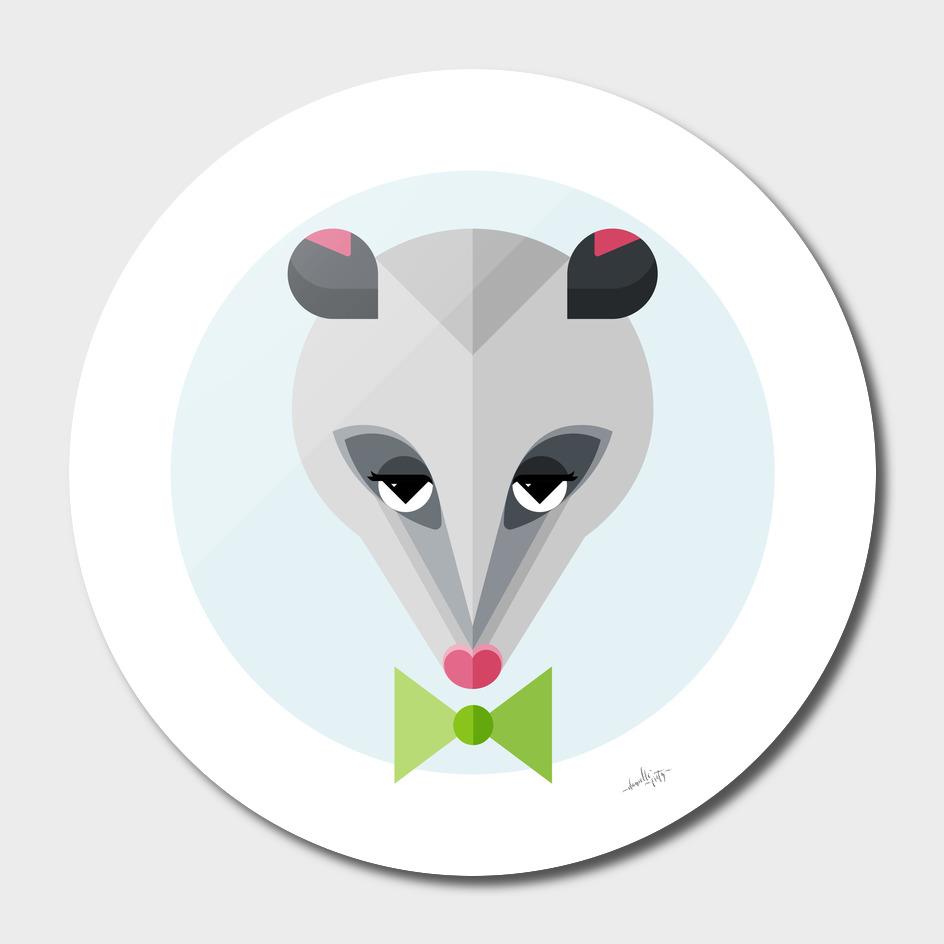 Opossum Illustration