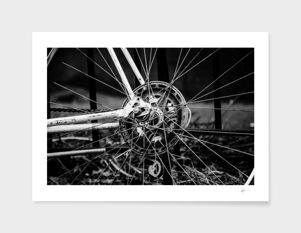 The Sprocket and the spokes.