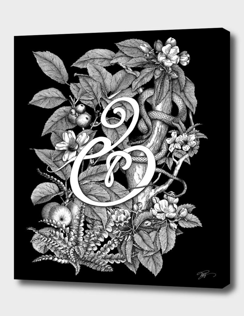 Ampersand – Adam & Eve BLACK