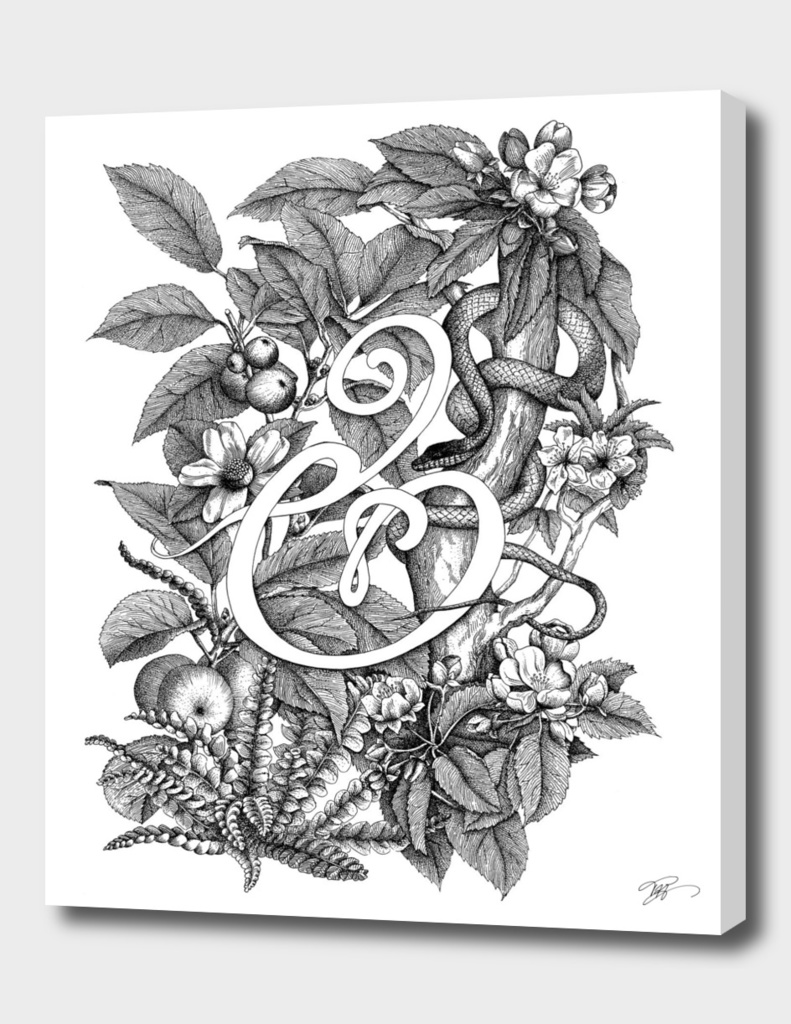 Ampersand – Adam & Eve, White
