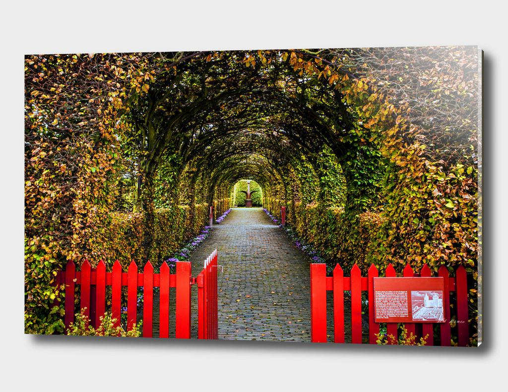 Beautiful autumn european park.