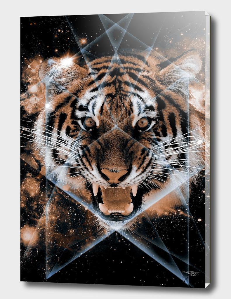 The Tigris