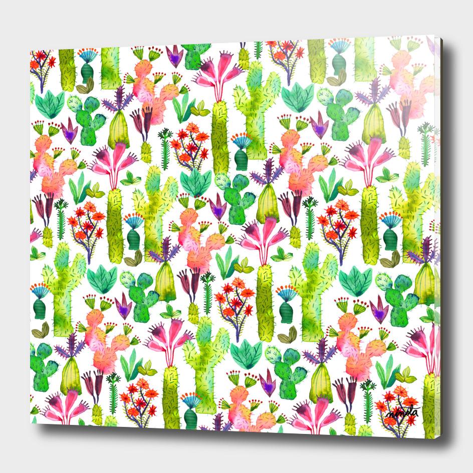 Cacti garden pattern
