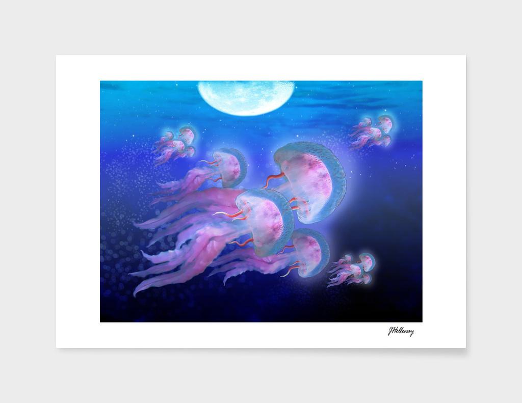 pink-jellyfish