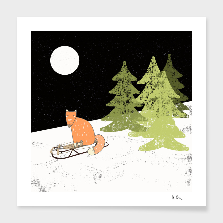 Winterfun-Sleding fox in winterforest at night