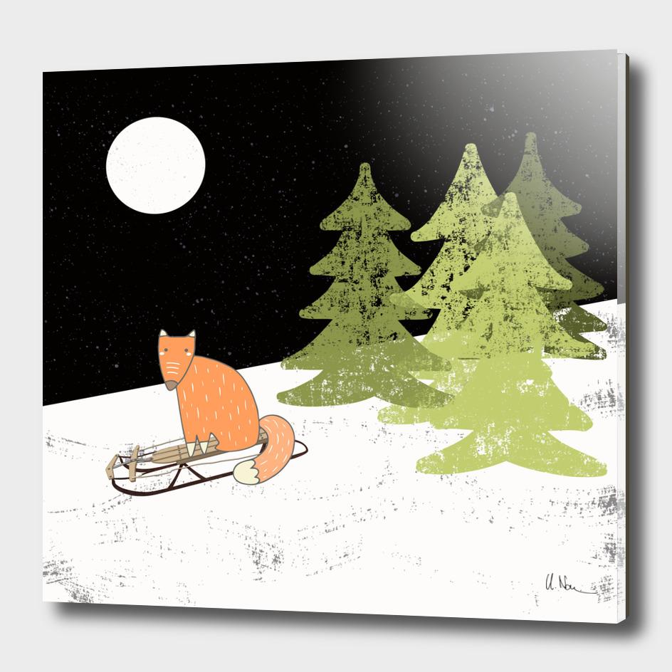 Winterfun-Sleding fox in winterforest at night