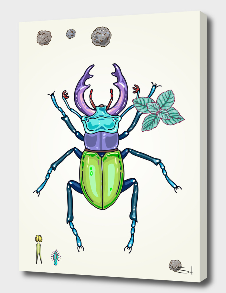 happy stag-beetle