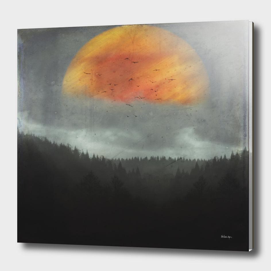 Spaces XVI - fireball