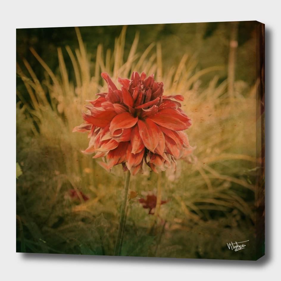 Hand painted vintage flower