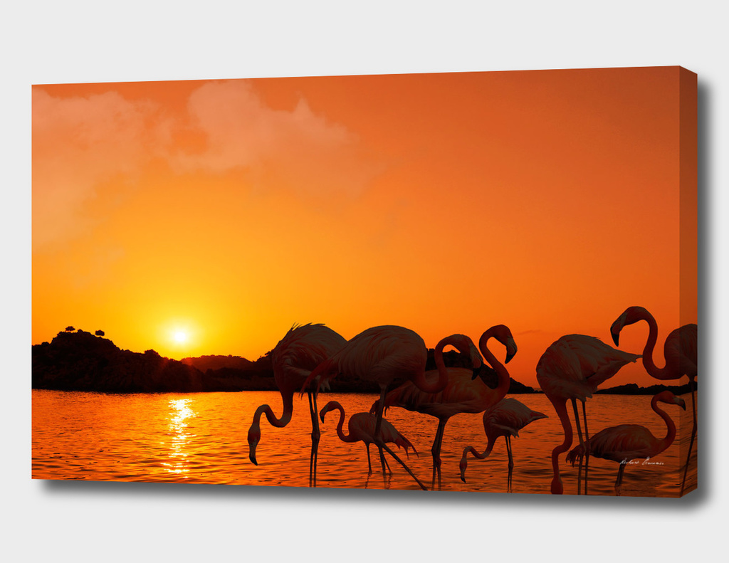 RDP-COMP 550003 Flamingos Sunset_