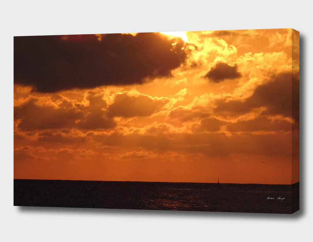 Wild Sunset in Paradise