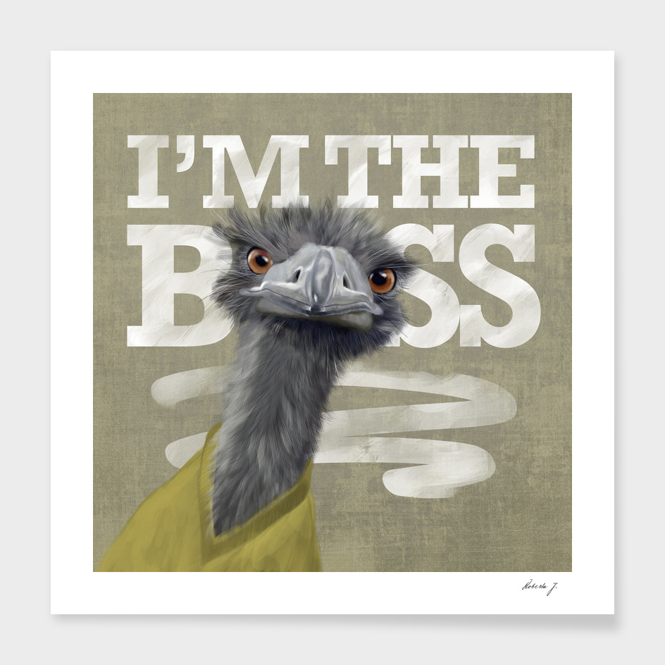 I'm the Boss! Ostrich