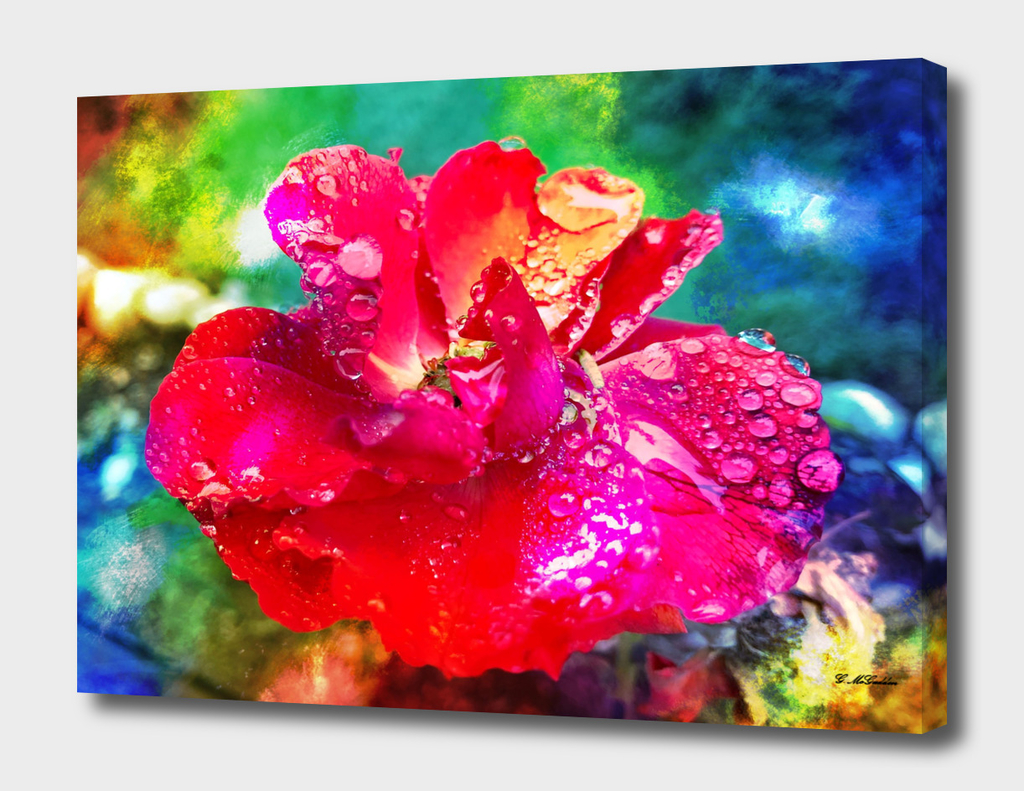Lux Flora II