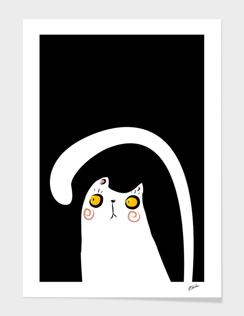 Dark Night White Cat