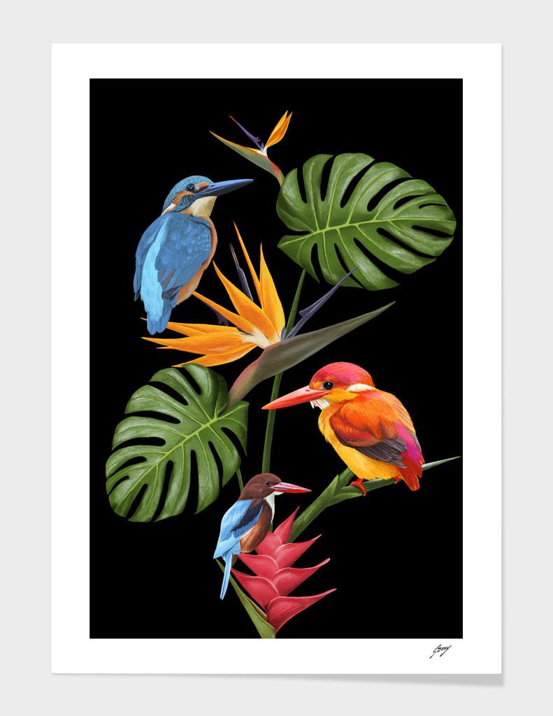 3_Birds_in_Paradise