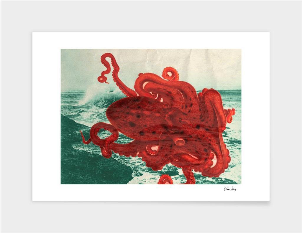 Octopus Beach