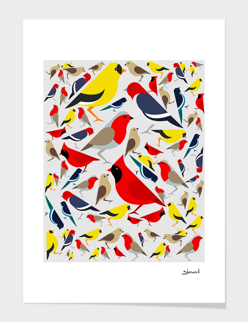 The birds from the colorful world.