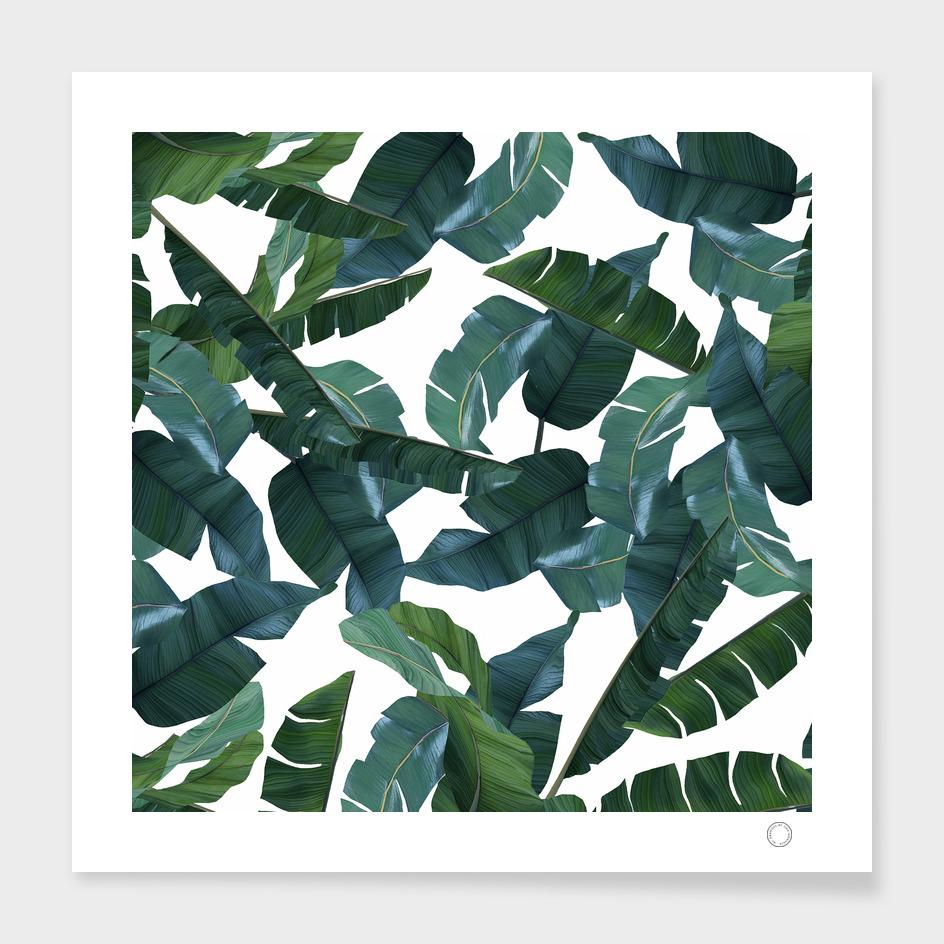 Banana Leaf Decor