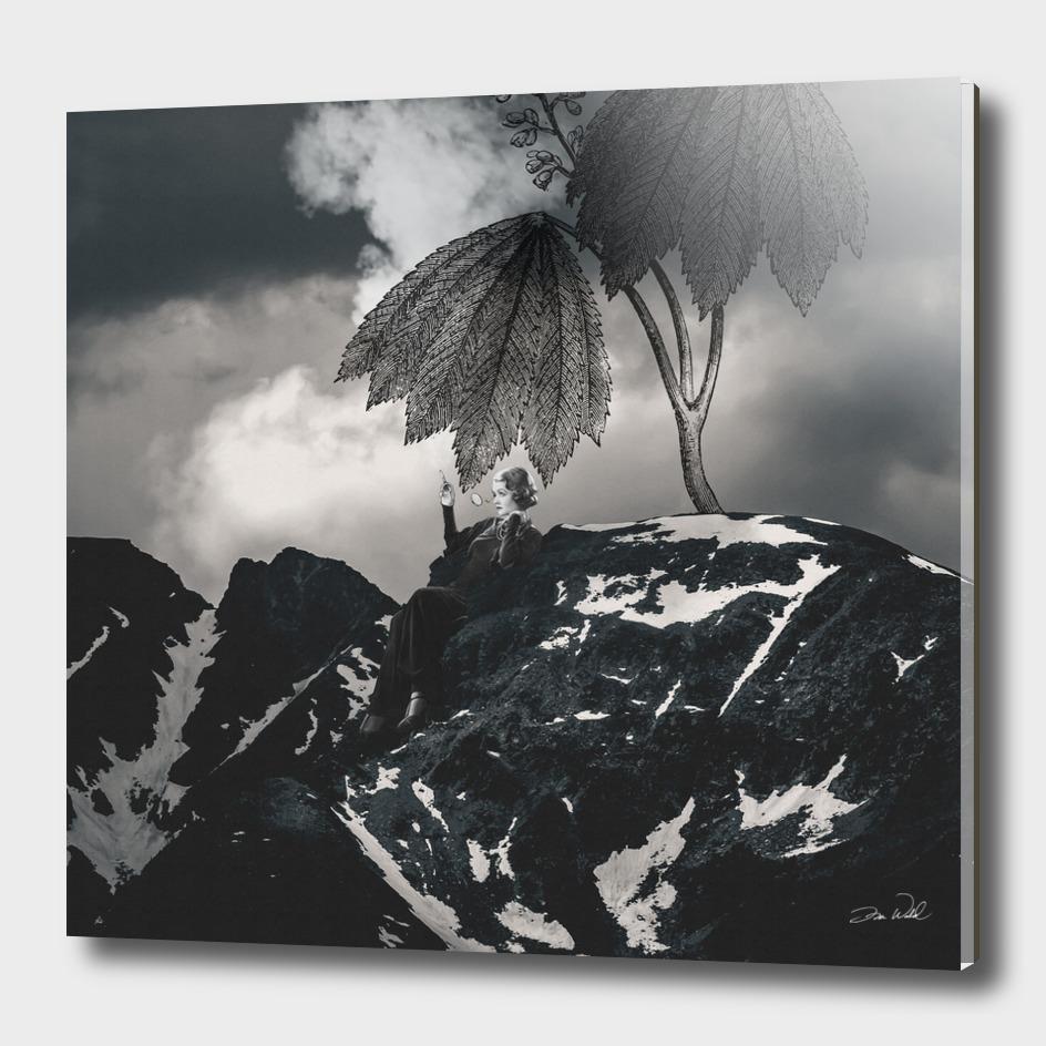 Mountain Smoker