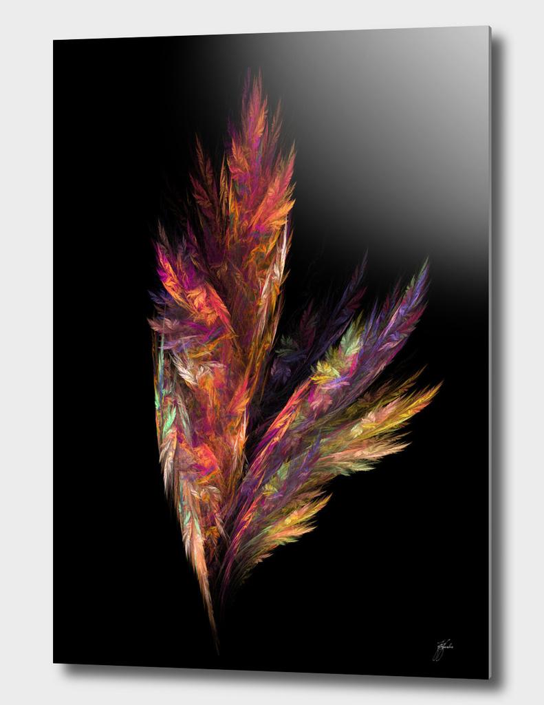 flower color fractal art